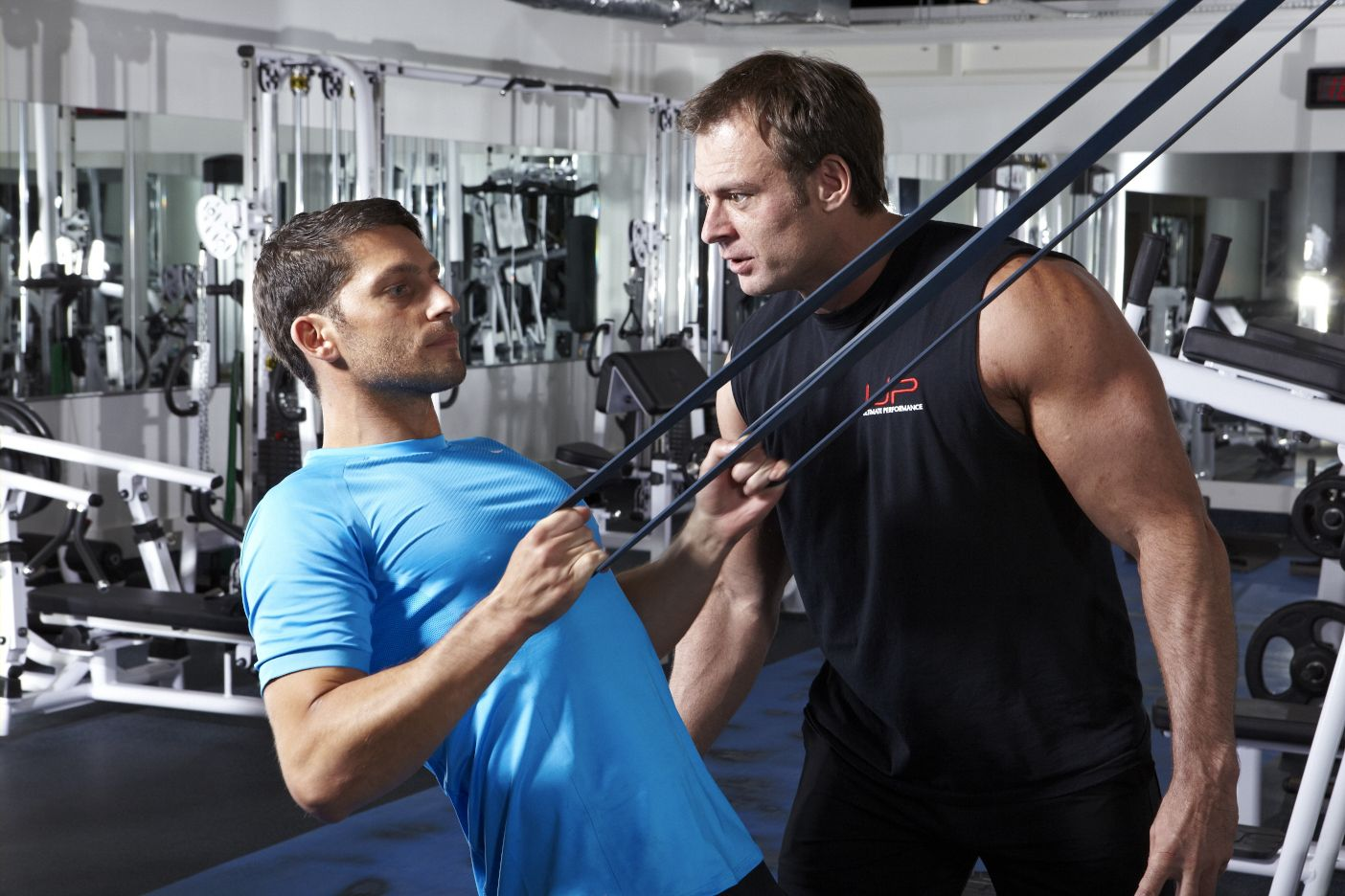Beginner Programme Design For Strength and Muscle Building - UP