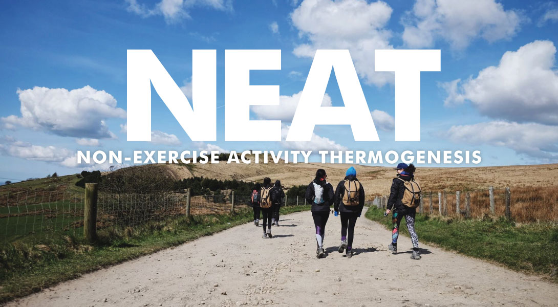 Non-Exercise Activity Thermogenesis