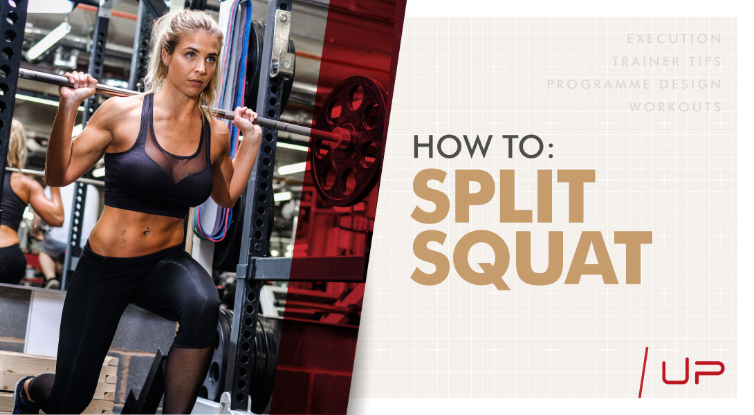 Split squat how to guide