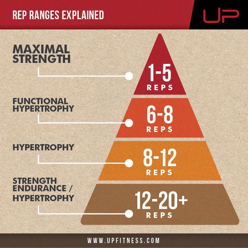 Rep ranges
