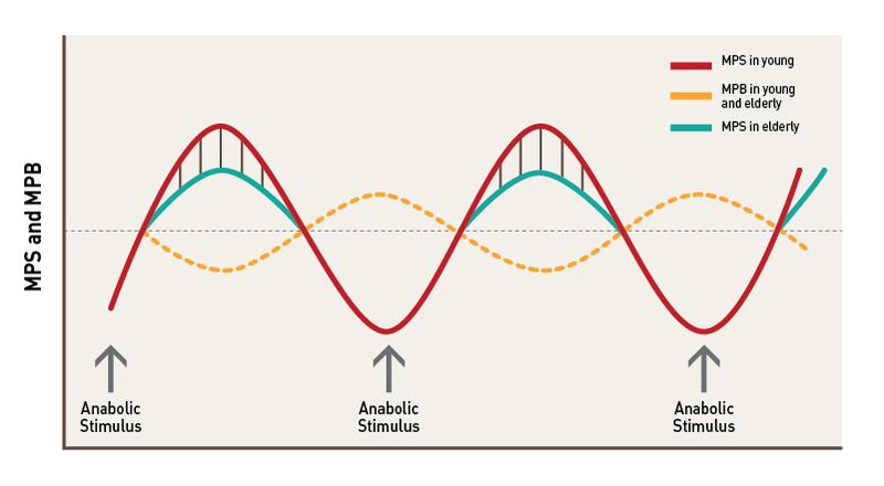 anabolic peak protein
