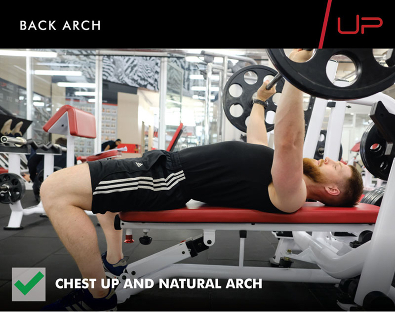 Bench press anatomy - correct back position