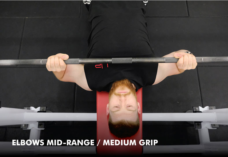 Bench press anatomy - medium grip